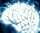 الاكتئاب قد يؤثر على قوة الذاكرة