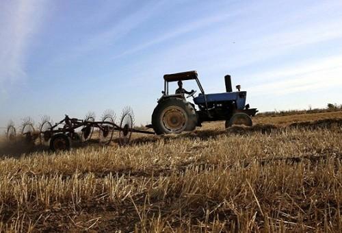 العراق يتوقع ارتفاع واردات الحبوب في 2018 بسبب الجفاف