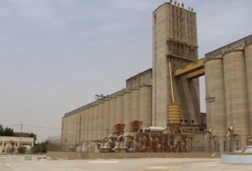 مجلس البصرة يكشف تعاون جهات حكومية مع مافيات تستورد الحنطة وتسويقها للدولة