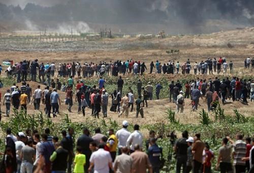 برلماني أردني يتساءل: مشايخ الحكام أفتوا ضد العراق وسوريا وقطر ونسوا القدس